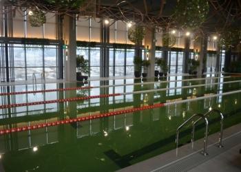 Строительство бассейнов,хамамов, саун под ключ
