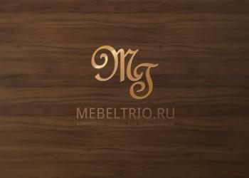 Кухни, шкафы-купе на заказ во Владимире | Мебель-Трио