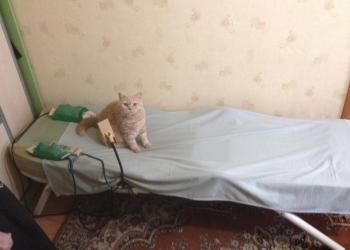 Массажная кровать Ceragem Master CGM M3500