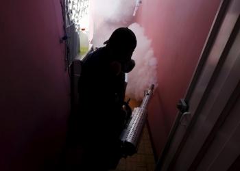 Уничтожим клещей комаров и тараканов в Ногинске