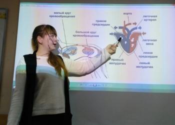 Подготовка к ЕГЭ, ОГЭ в Подольске.
