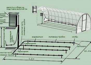 Монтаж систем автоматического полива Белгород
