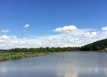 Продажа земельного участка с прудом