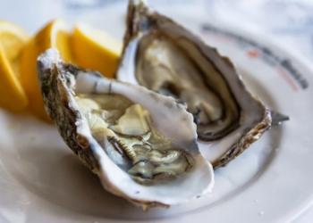 Устрицы живые черноморские и прочие морепродукты