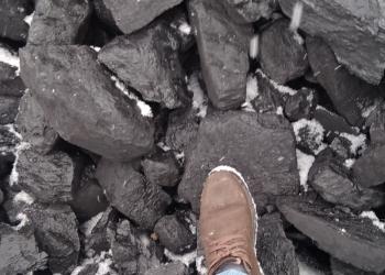 Уголь марок: СС, Д, 3Б; сорта Р, ПК, КО, О, МСШ, и т.д.