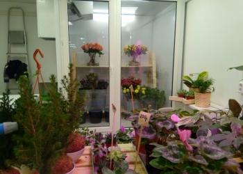 Холодильник цветочный витрина Polair, торг