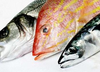Рыба свежемороженая оптом и в розницу (Петрозаводск)