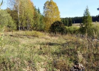 Земельный участок без построек (ЛПХ)