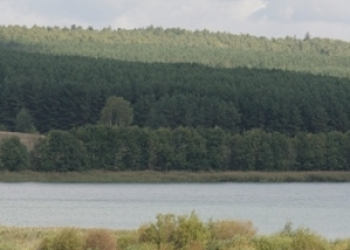 Участок 10 сот. около озера д.Инютино от собственника