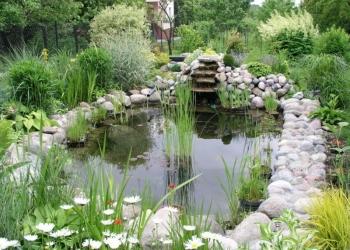 Строительство  водоемов и прудов