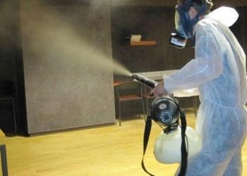 Служба дезинфекции лесные клещи шершни и комары Раменское