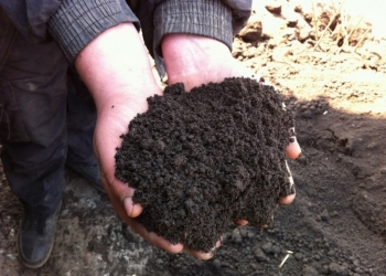 Доставка строительных материалов песок щебень чернозем