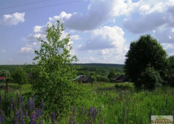 Земельный участок в деревне Новая Владимировка