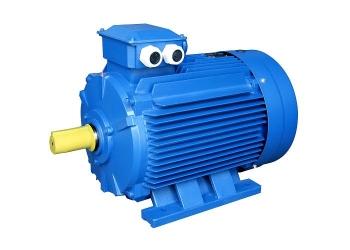 Электродвигатели WEG серии W21