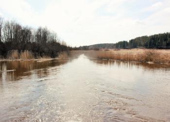Земельный участок в Карелии 350 соток ИЖС
