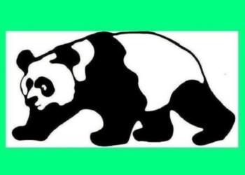 Детективное Агентство «Панда» детективные услуги