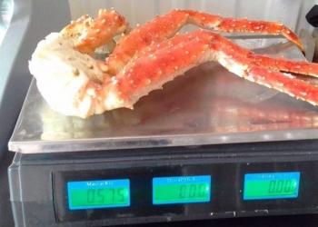 Продам: морепродукты, краб , рыбу. в Владивостоке