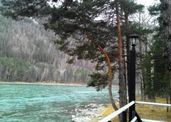 Продам турбазу на берегу Катуни в Чемальском районе