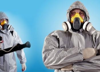 Уничтожение насекомых,тараканов,клопов,дезинсекция