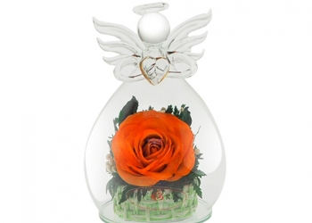 Цветы в стекле, розы оранжевые