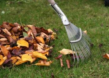 Уборка территории очистка участков 89333026006 Без выходных.