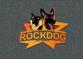 Дрессировка собак в Rockdog