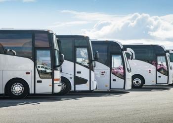 Транспортные пассажирские лицензии