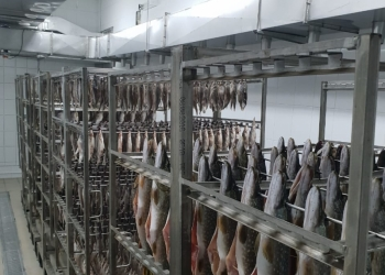 Камера вялки рыбы