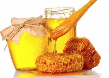 Организация купит мед оптом