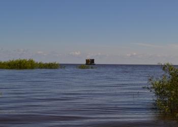 Продаю участок в живописном районе Новгородской области