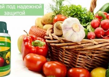 Хит года! Увеличение урожая на60%!