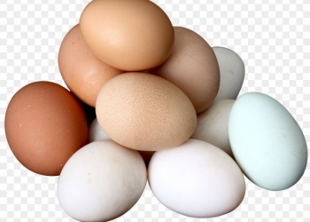 Продажа молока козьего и яиц куриных