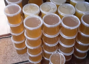 Мед весовой оптом с пасеки костромского производителя.