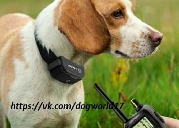 Электроошейник для дрессировки собак PET 900B-1