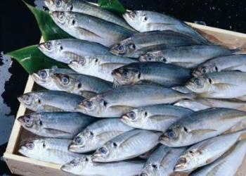 Рыба речная с/м оптом