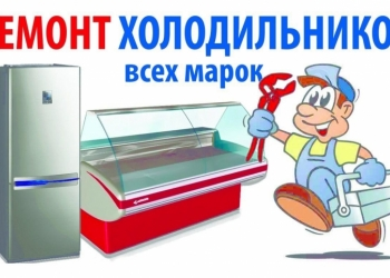 Срочный ремонт холодильников в Электростали