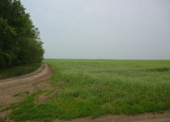 земля сельскохозяйственного назначения