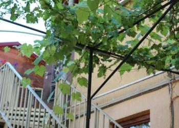 Срочная продажа дом в Адлере.