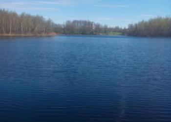 Дом у озера!