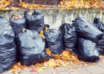 Вывоз листвы, веток, мусора, старой мебели, хлама, барахла в Омске