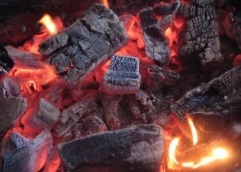 Дрова для мангала, бани, камина. розница, опт