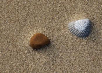 Песок речной обогащённый