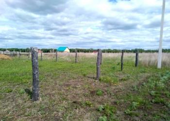 Продажа земли в с.Кушнаренково