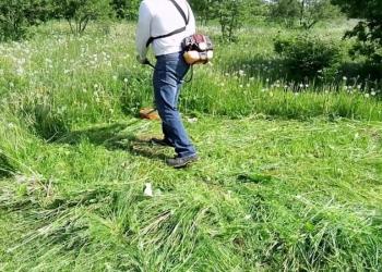 покос травы, молодой поросли, спил дерев в Пензе (подробнее: