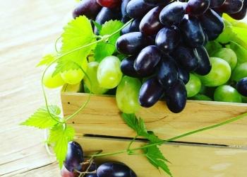 Овощи фрукты и ягоды.оптом