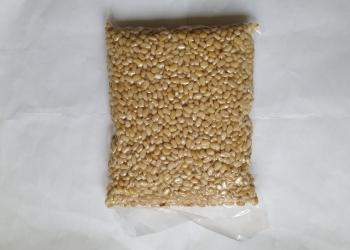 Ядро сибирского кедрового ореха.