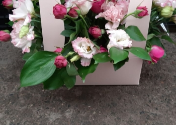 Продажа, доставка цветов