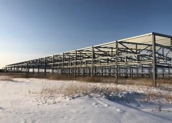 Завод по выращиванию шампиньонов