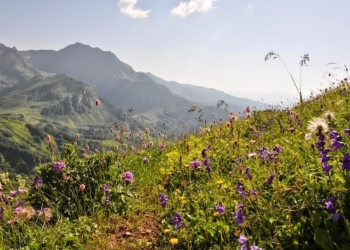 Zumba фитнес-тур в Абхазию 1-14 августа