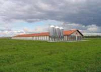Земельный участок площадью 1,89 га. Огорожен, в собственности.